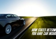 How-State-Check-for-Car-Insurance